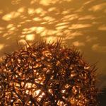 Thorn-lamp